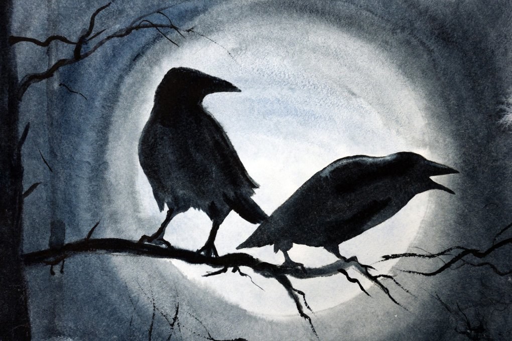Ворона на открытках, псков